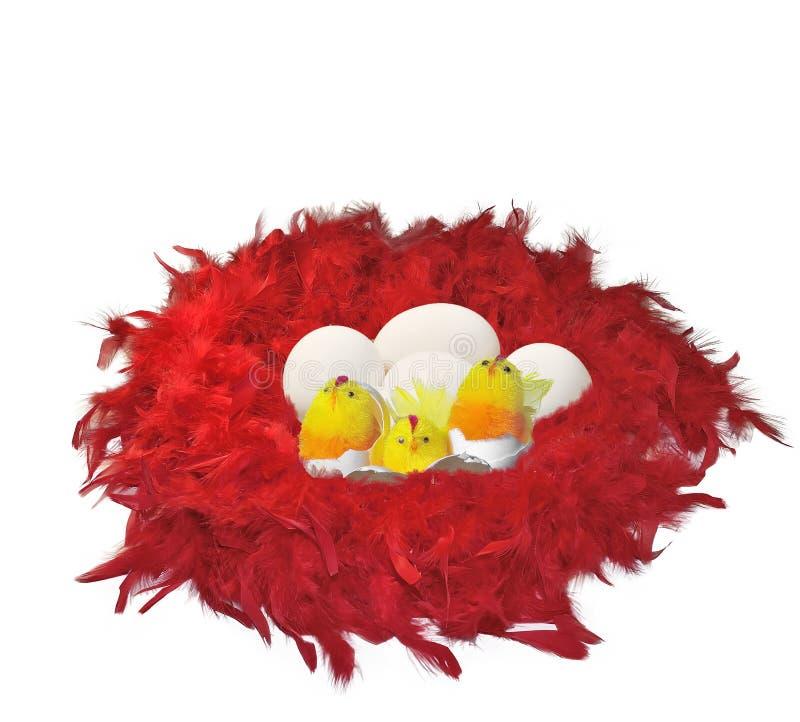 Giocattoli ed uova divertenti dei pulcini in piume rosse fotografia stock libera da diritti