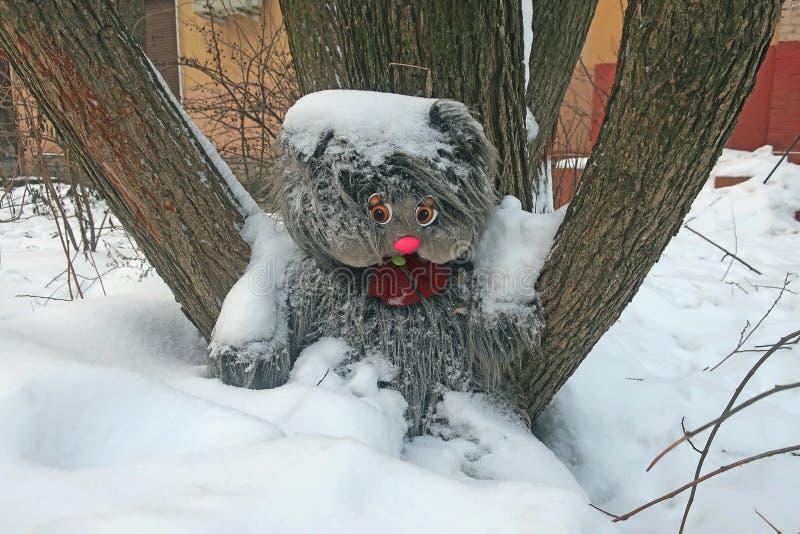 Giocattolo abbandonato della pelliccia sotto un albero nella neve fotografia stock