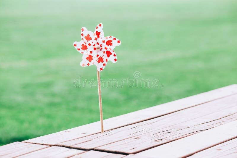 Giocattolo con il simbolo canadese della bandiera durante la celebrazione nazionale di giorno del Canada luglio immagine stock libera da diritti