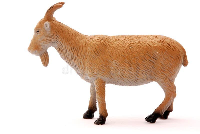 Giocattolo della capra fotografia stock libera da diritti