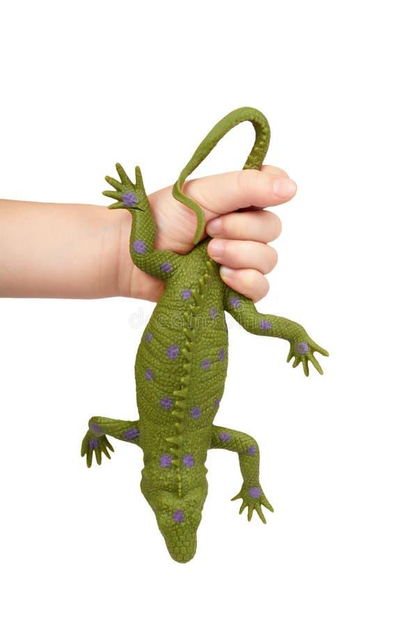 Giocattolo di gomma verde della lucertola con la mano del bambino, isolata su fondo bianco immagine stock