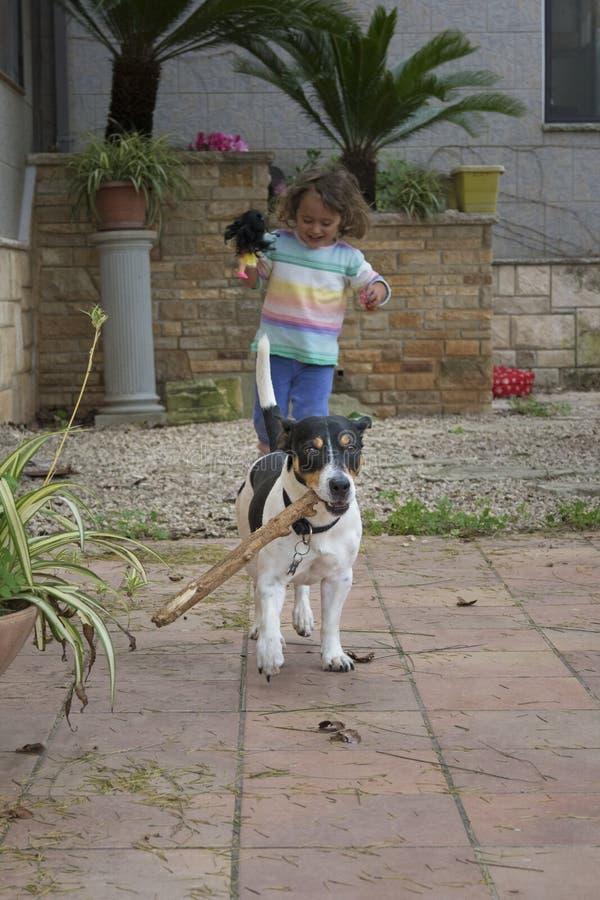 gioco cane del piccolo e della bambina fotografie stock