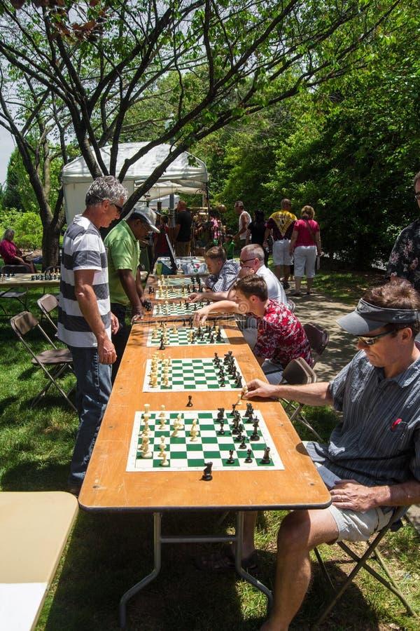 Gioco dei giochi di scacchi multipli immagini stock