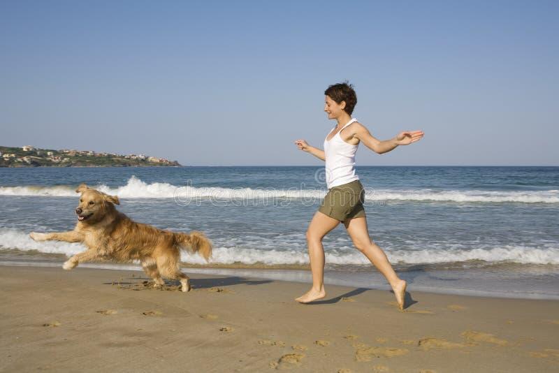 Gioco del cane e della ragazza fotografie stock
