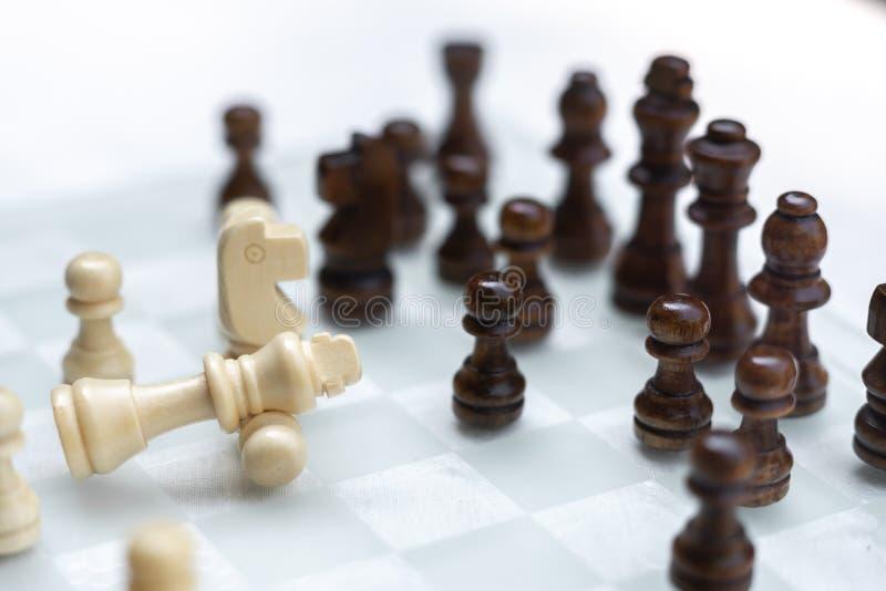Gioco di scacchiera, concetto competitivo di affari, situazione difficile di incontro, perdente e vincente fotografia stock libera da diritti