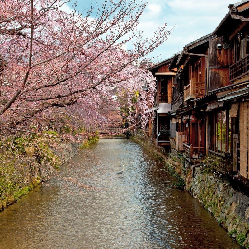 Gion, Kyoto vieja imagen de archivo