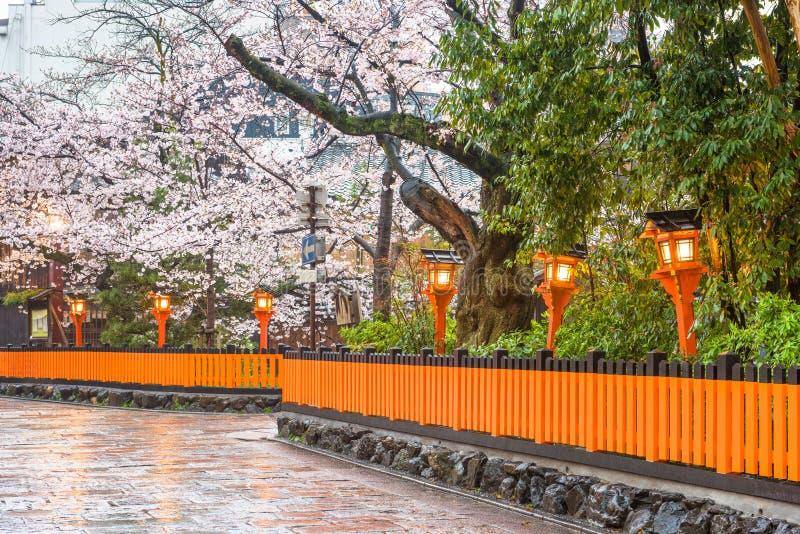 Gion Shirakawa, Kyoto, Japan in de lente stock fotografie