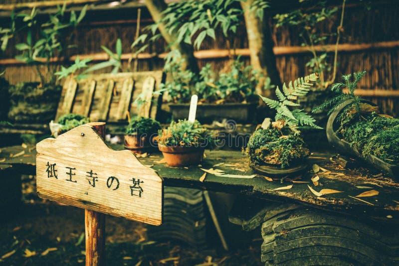 Gion ?wi?tynia, Kyoto, Japonia fotografia stock