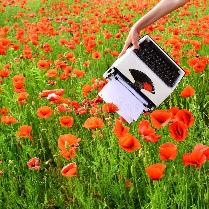 Giornalismo e scrittura, estate fotografie stock