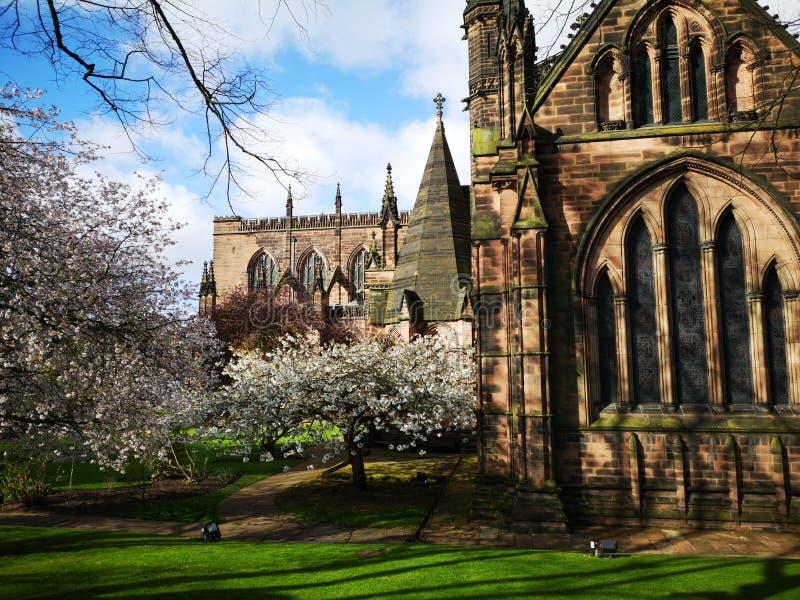 Giornata della primavera intorno alla cattedrale di Chester, Chester, Cheshire, Regno Unito immagine stock libera da diritti
