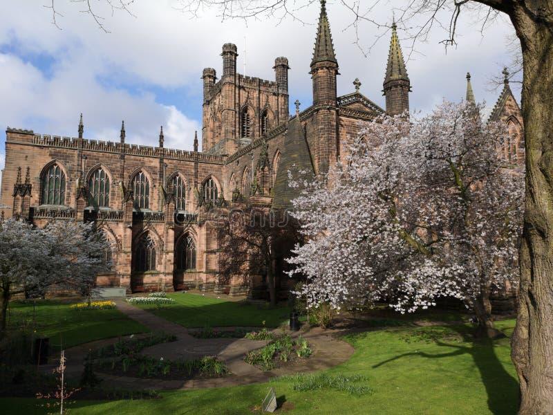 Giornata della primavera intorno alla cattedrale di Chester, Chester, Cheshire, Regno Unito fotografia stock