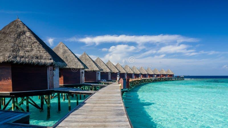 Giorni felici in Maldive fotografia stock libera da diritti