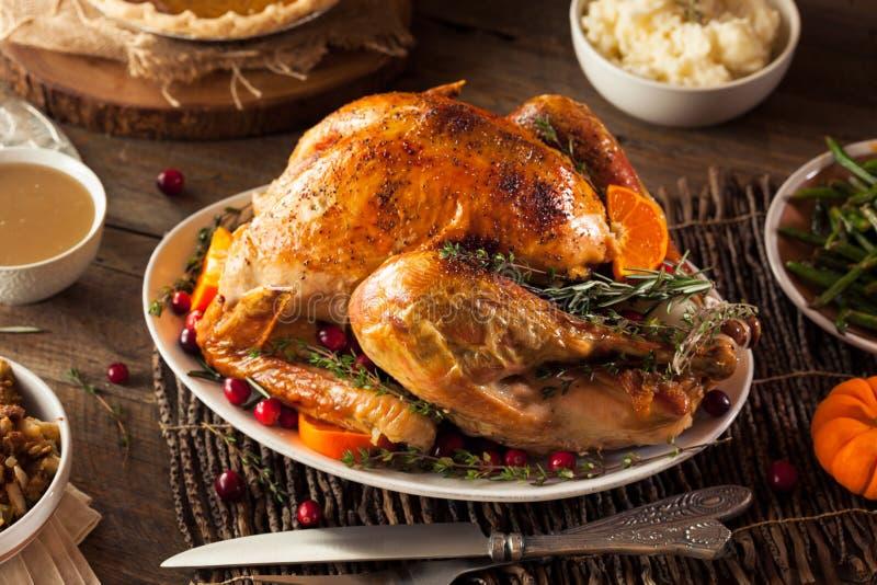 Giorno arrostito casalingo Turchia di ringraziamento fotografie stock