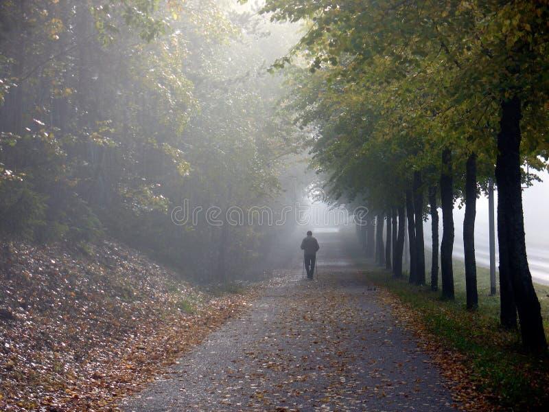 Giorno caldo e brillante di autunno fotografia stock