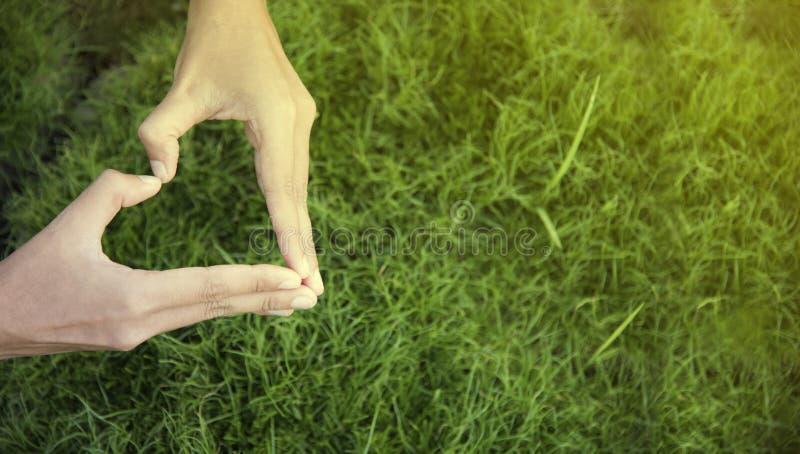Giorno dell'ambiente Mano della donna nella forma di cuore sul fondo dell'erba verde immagini stock