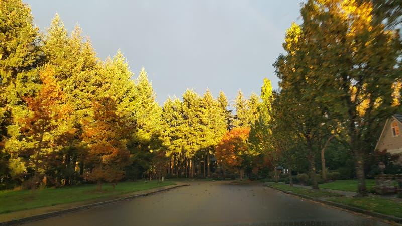 Giorno dell'autunno immagini stock libere da diritti