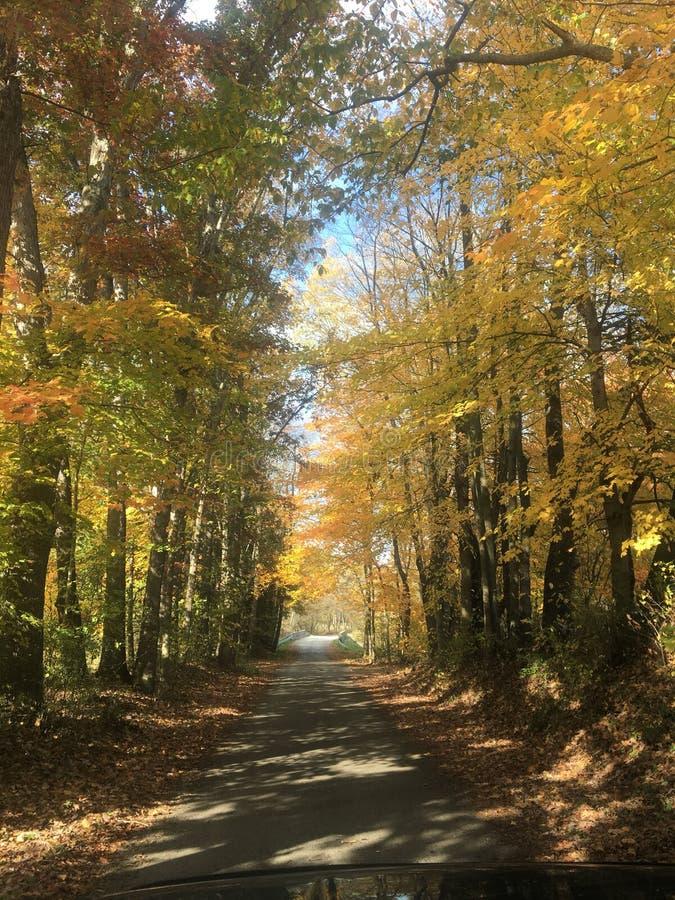 Giorno dell'autunno in paese immagini stock libere da diritti