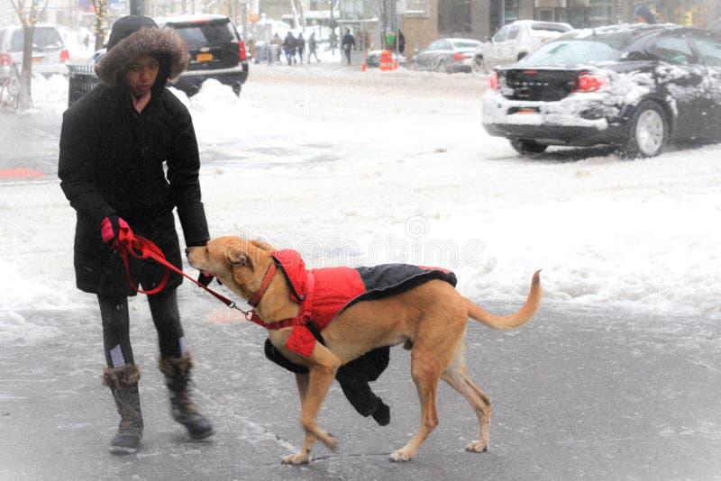 Giorno della neve di New York immagini stock libere da diritti