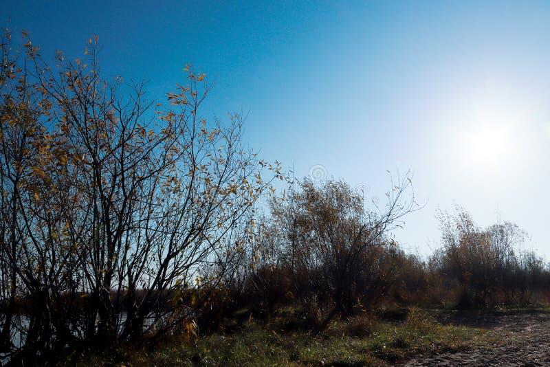Giorno di autunno in Arcangelo Visualizzazione del fiume Dvina nordico e porto fluviale in Arcangelo immagini stock libere da diritti