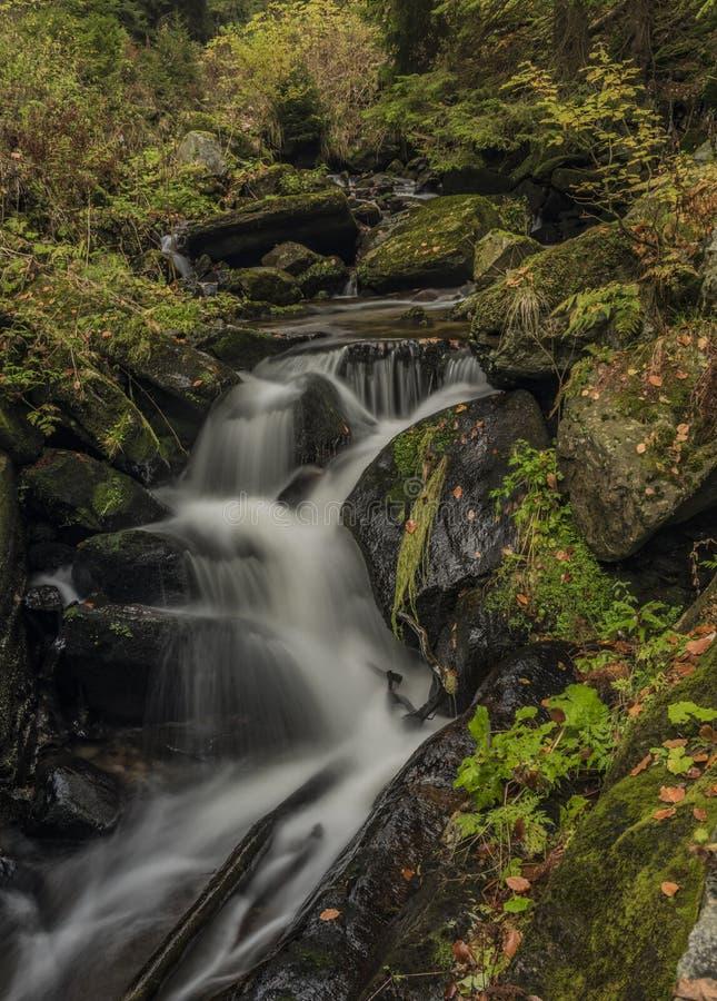 Giorno di autunno sul fiume Cista in montagne di Krkonose fotografia stock libera da diritti