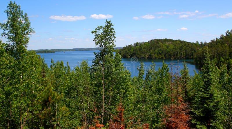 Giorno di estate meraviglioso: Bello lago nella foresta canadese fotografie stock libere da diritti