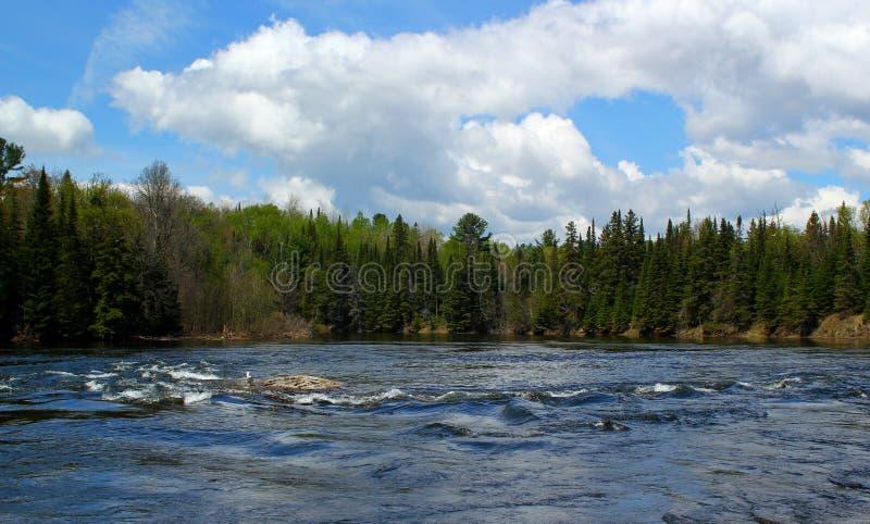 Giorno di estate meraviglioso: Bello lago in Ontario fotografie stock