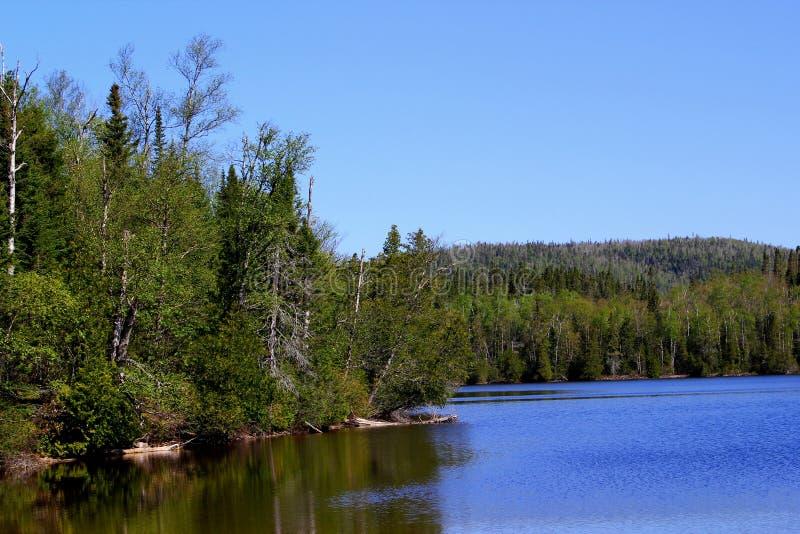 Giorno di estate meraviglioso: Bello lago in Ontario immagini stock