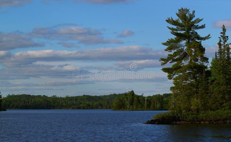 Giorno di estate meraviglioso: Bello lago in Ontario immagine stock libera da diritti