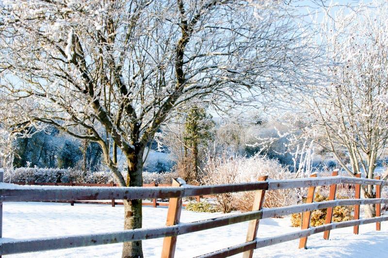 Giorno di inverno nel villaggio immagini stock libere da diritti
