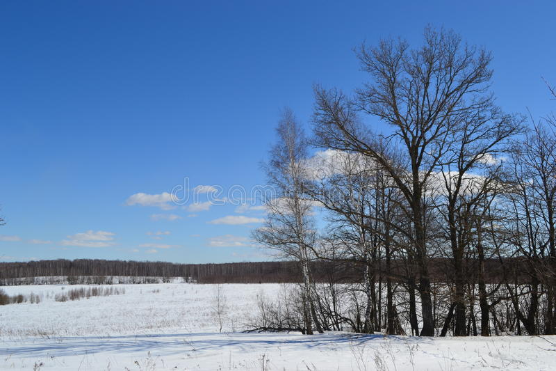 Inverno immagini stock libere da diritti