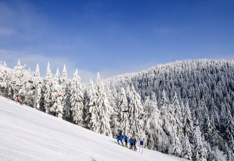Giorno di inverno soleggiato gelido Montagne nordiche dell'asiatico di bellezza immagine stock