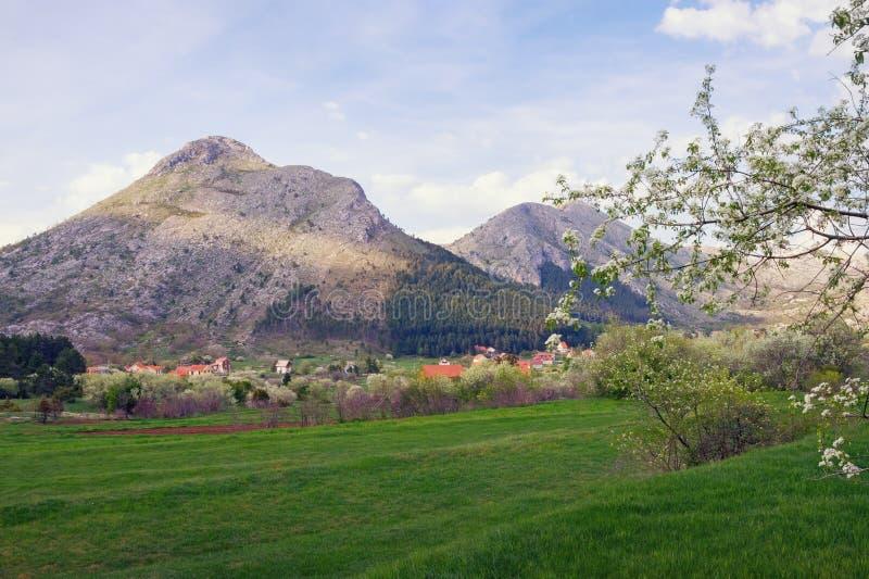 Giorno di primavera in montagne Il Montenegro, bella vista del parco nazionale di Lovcen fotografia stock libera da diritti
