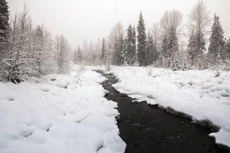 Giorno di Snowy intorno al villaggio di Whistler - insenatura di Fitzsimmons fotografia stock