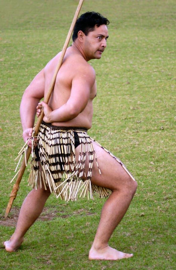 Giorno di Waitangi - festa nazionale della Nuova Zelanda fotografie stock libere da diritti