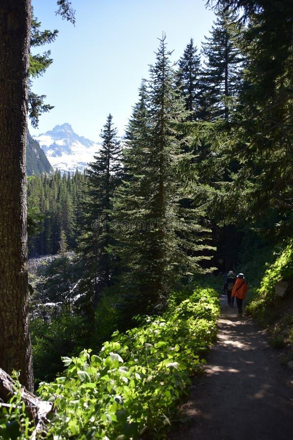 Giorno-escursione del supporto Rainier National Park fotografia stock libera da diritti