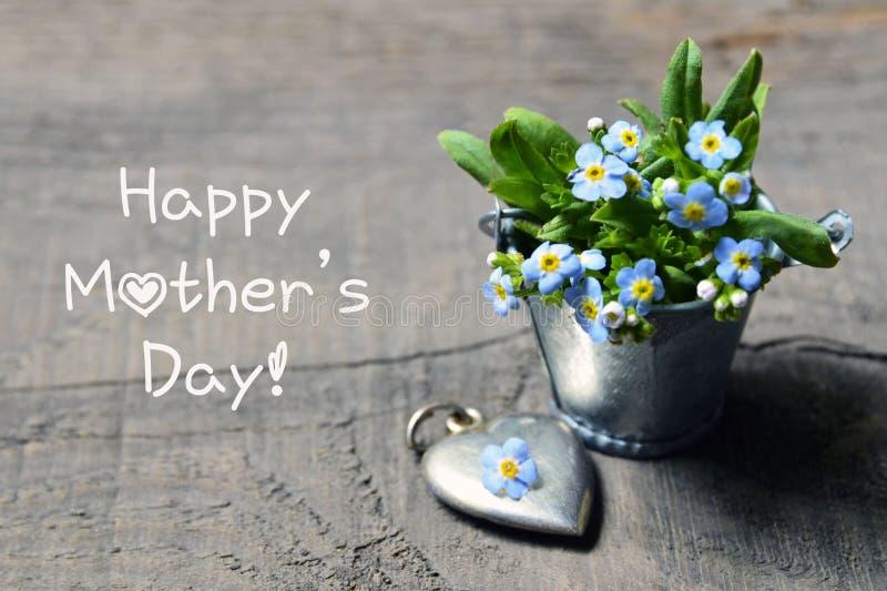 Giorno felice del `s della madre Il nontiscordardime fiorisce nel piccolo secchio del metallo e nel cuore d'argento dell'annata s immagine stock libera da diritti