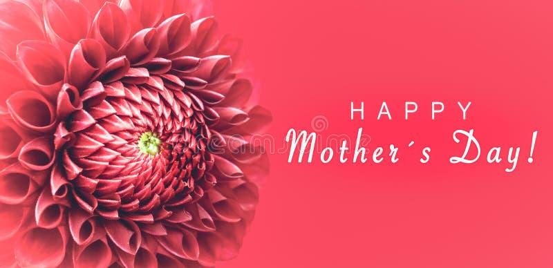 Giorno felice del ` s delle madri! e dentelli foto dei dettagli del fiore della dalia la macro come struttura del confine con l'a illustrazione vettoriale