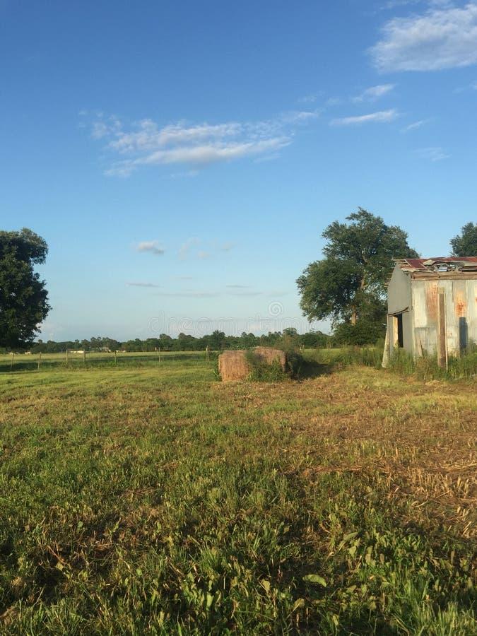 Giorno fresco della Luisiana fotografia stock