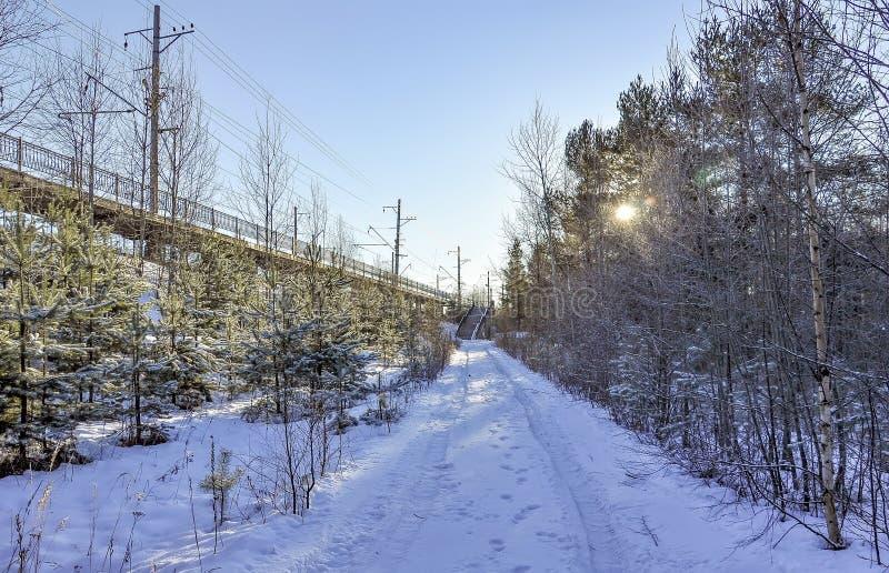 Giorno gelido di inverno soleggiato Strada di inverno alla piattaforma ferroviaria immagine stock libera da diritti