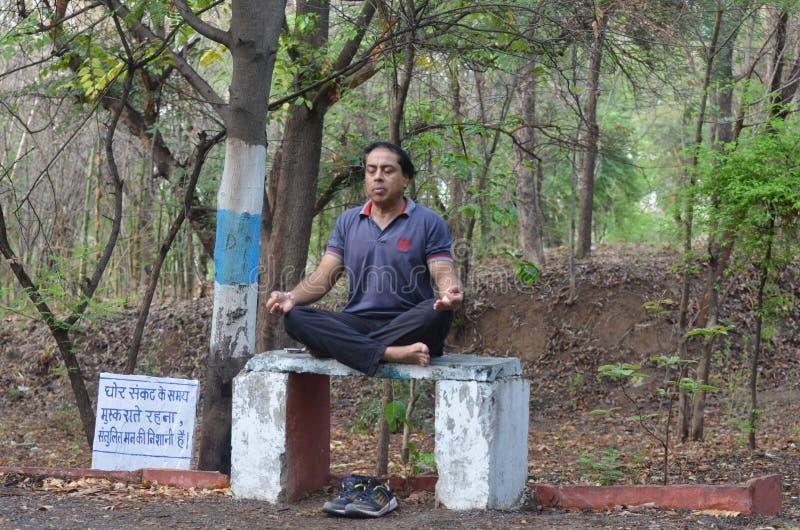 Giorno internazionale di yoga immagini stock