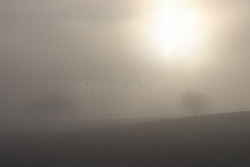 Giorno nebbioso 4 fotografie stock