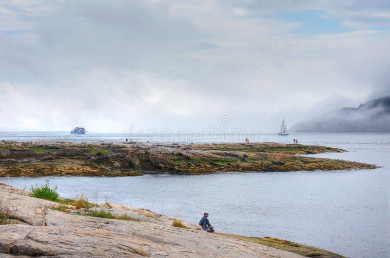 Giorno nebbioso al fiordo fotografie stock libere da diritti