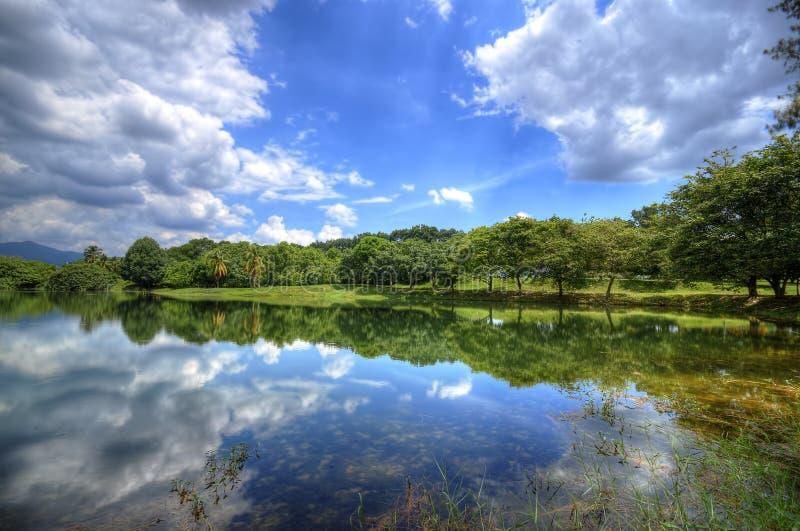 Giorno nuvoloso nel lago herbs immagini stock