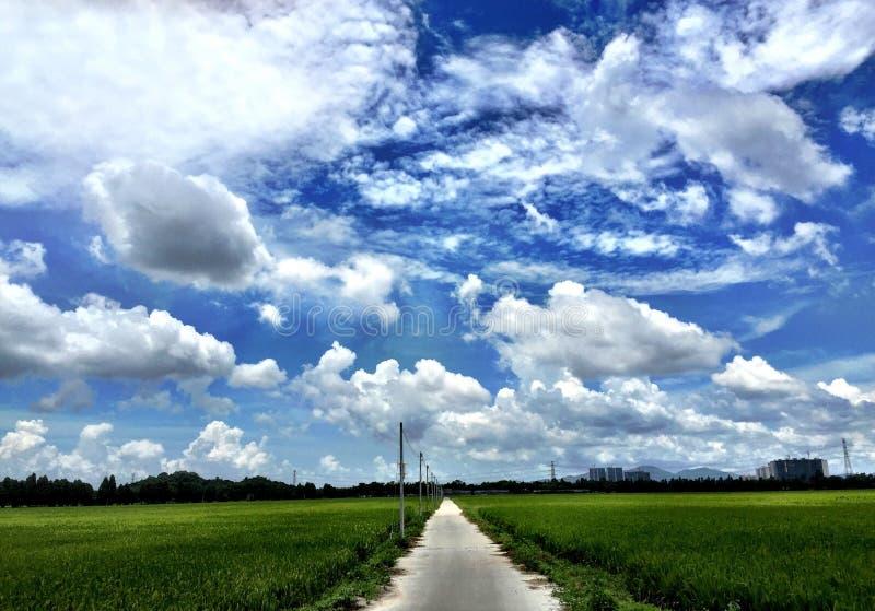 Download Giorno pieno di sole immagine stock. Immagine di cielo - 55359961