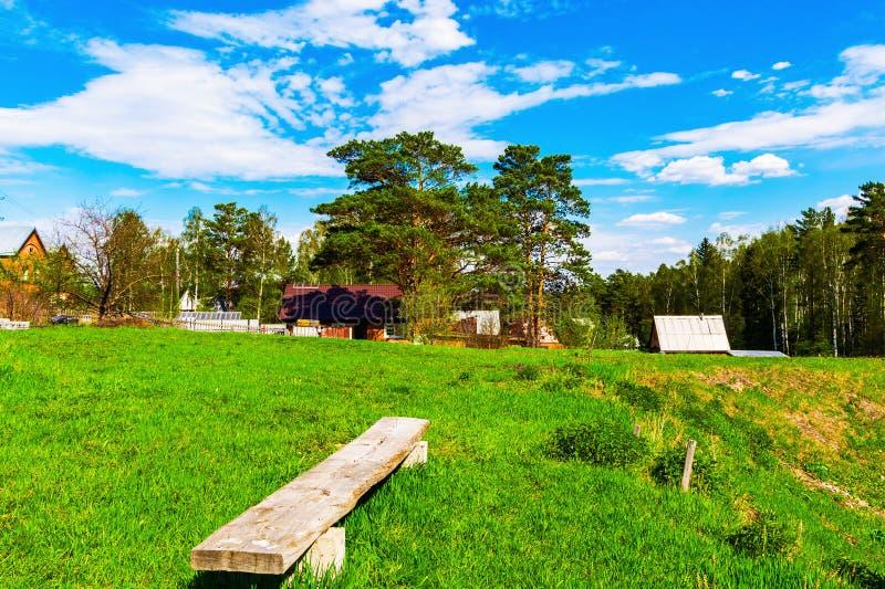 Giorno pieno di sole di estate Paesaggio rustico Foresta verde, cielo blu immagine stock