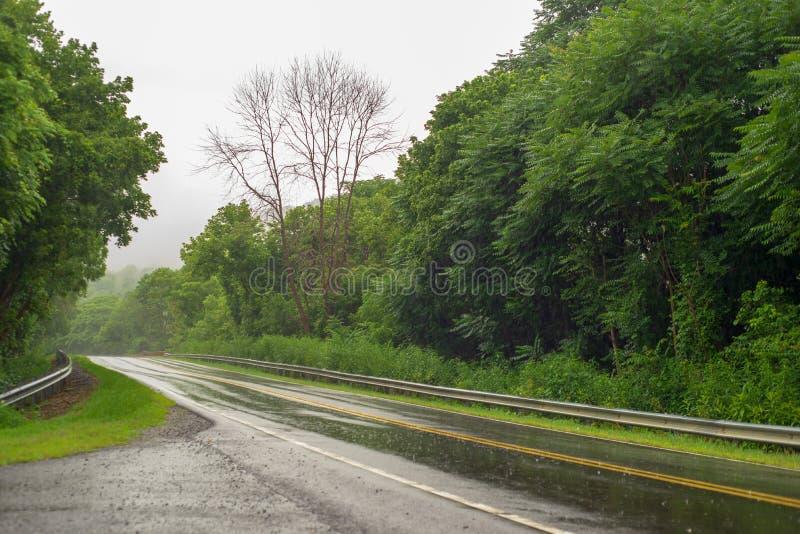 Giorno piovoso su una strada della montagna immagini stock libere da diritti