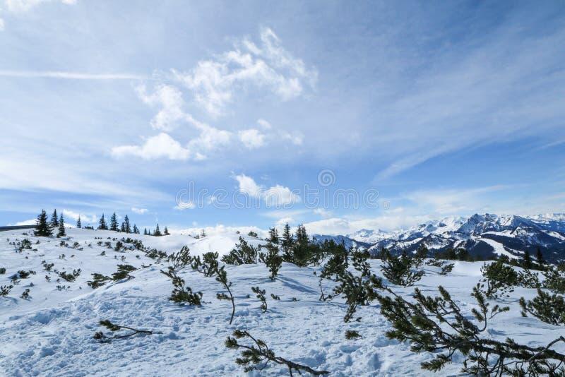 Giorno soleggiato in alpi austriache fotografia stock libera da diritti