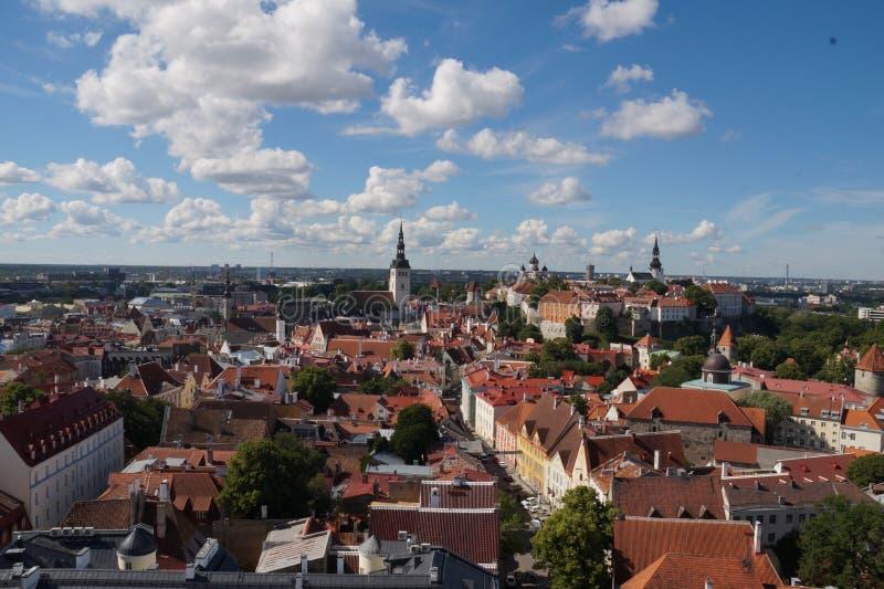 Giorno soleggiato in Europa, estate in Estonia immagini stock