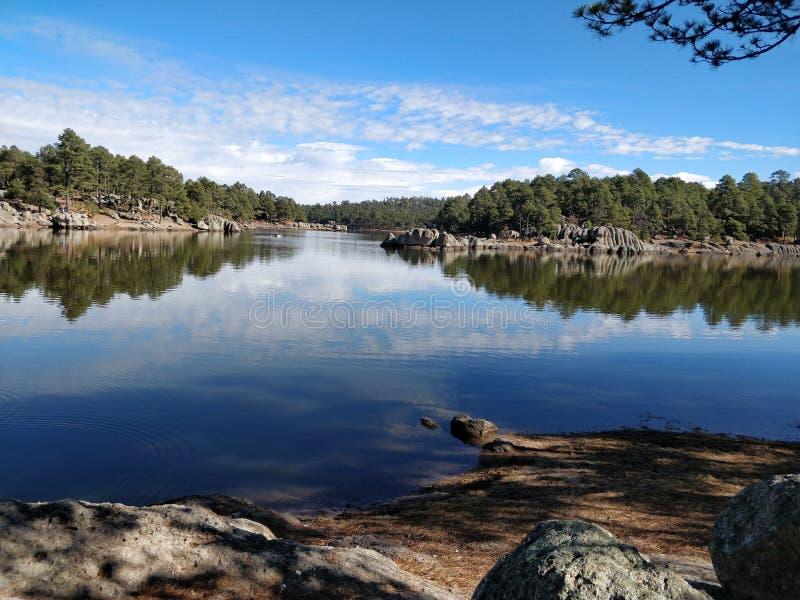 Giorno soleggiato nel lago fotografie stock