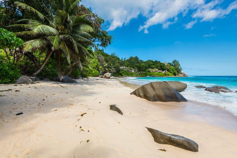 Giorno soleggiato sulla spiaggia di Carana, le Seychelles fotografia stock libera da diritti